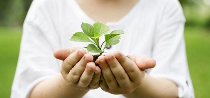 Článek 5.6. Den životního prostředí