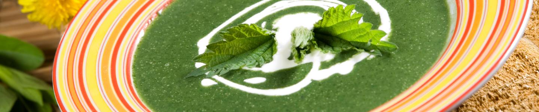 Recept Kopřivová polévka
